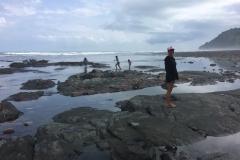 Exploring the Shores Near Pavones