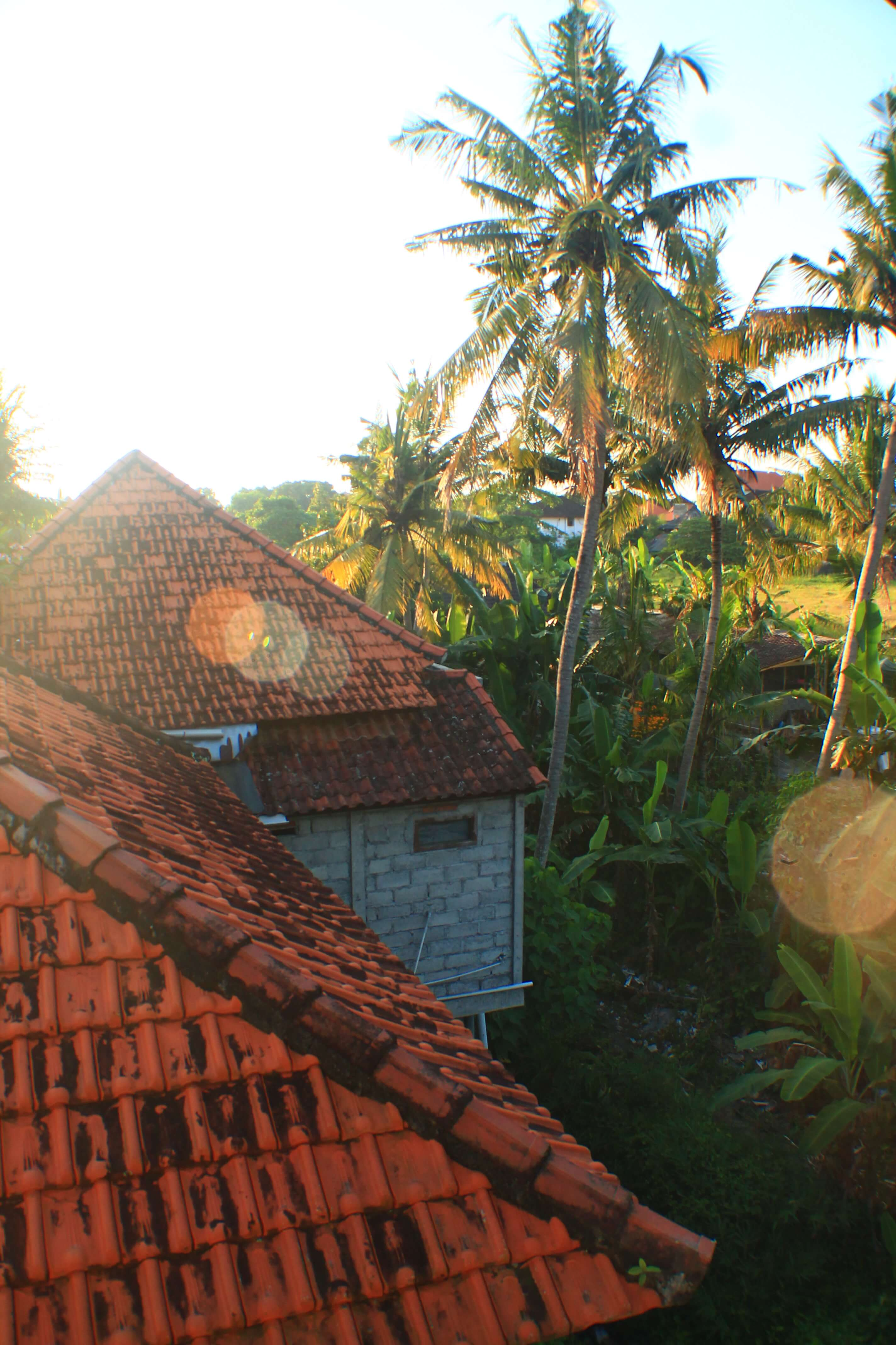 Things to do in Ubud, Bali