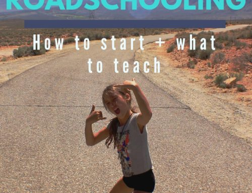Ultimate Guide To Roadschooling: How To Start + What To Teach