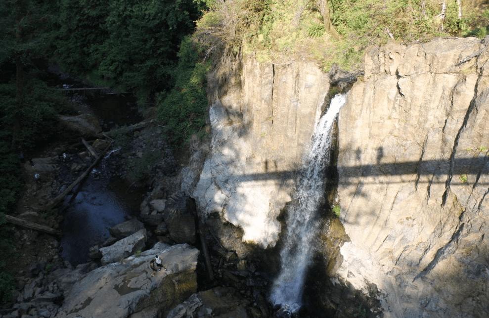 Oregon Road Trip Itinerary drift creek falls