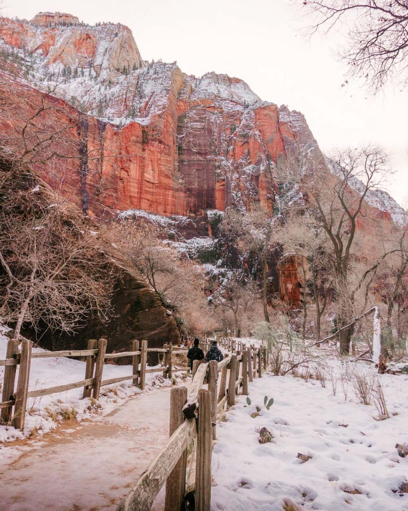 Riverside Walk at the Temple of Sinawava, Zion