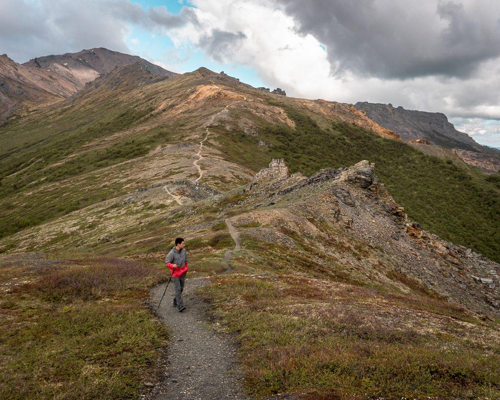 Mount Healy Overlook, Denali National Park, Hiking and Camping, Alaska