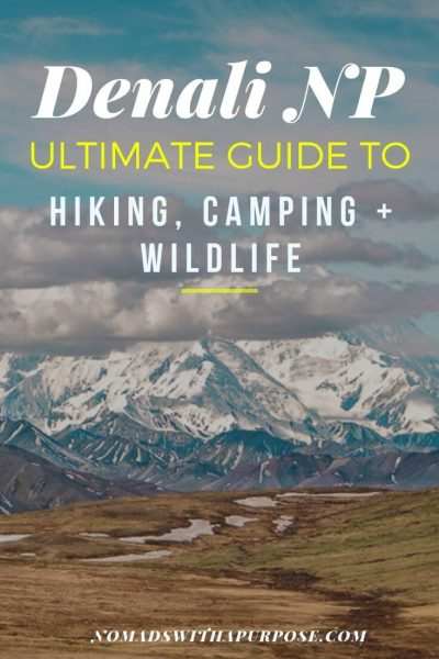 Denali National Park: Hiking, Camping, and Wildlife