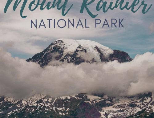 Camping In Mount Rainier National Park