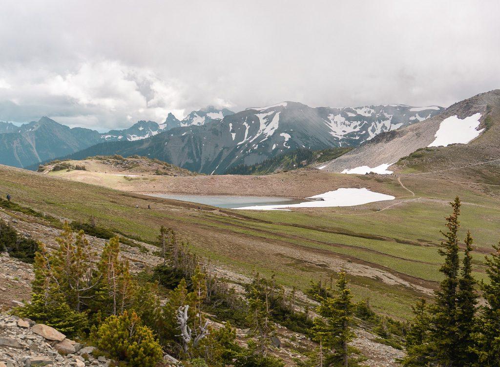 Hiking in Sunrise Mount Rainier NP