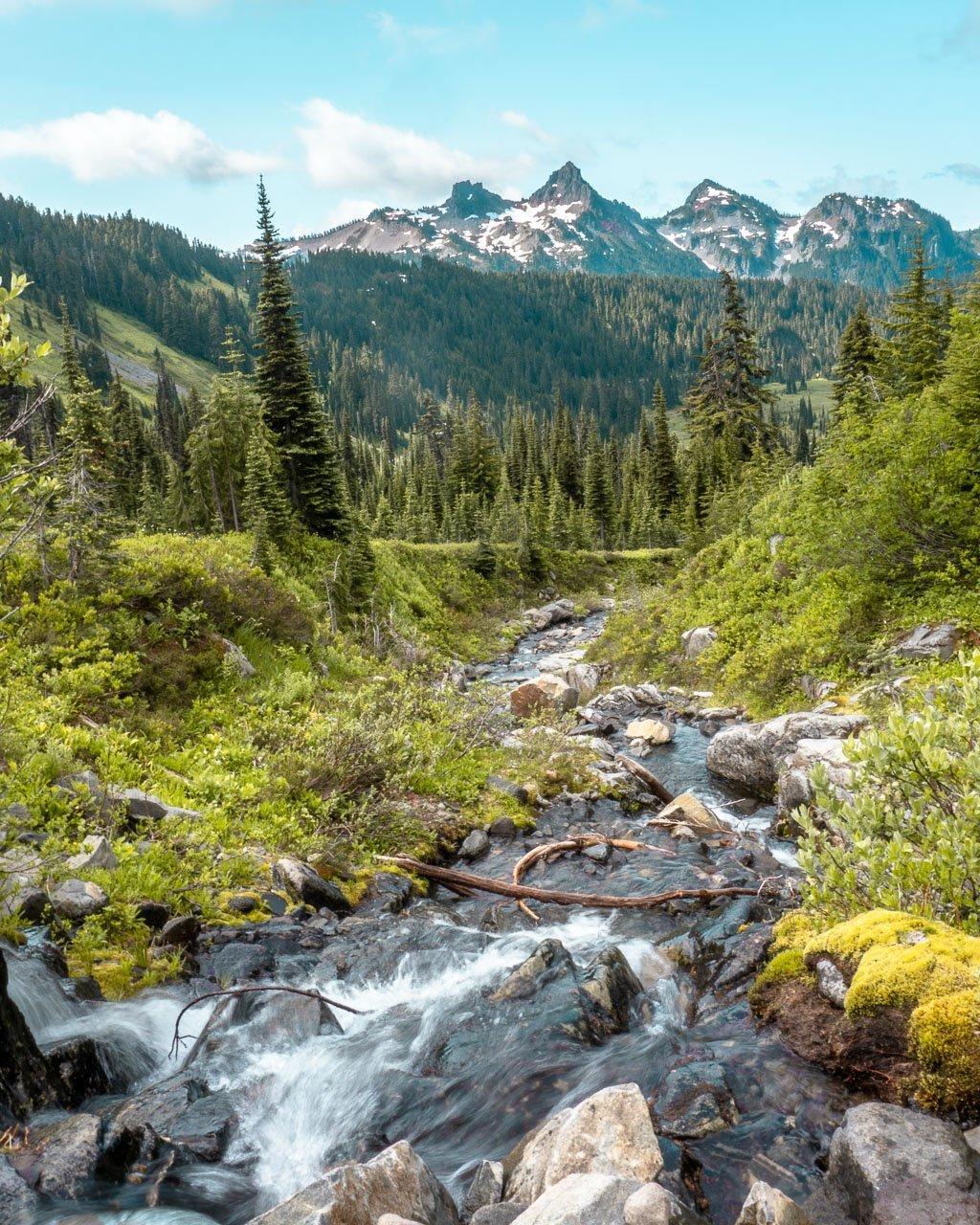 Hiking Paradise Mount Rainier NP, Things to do Rainier ...