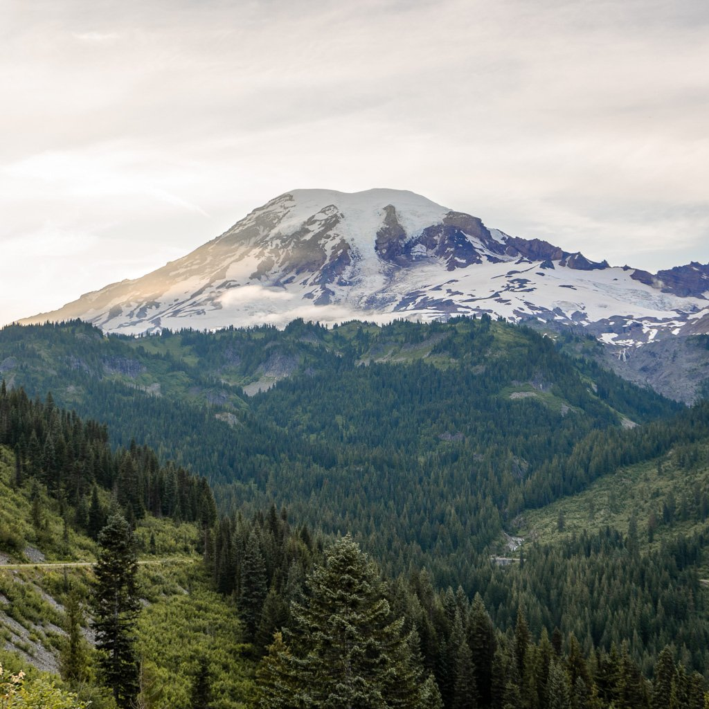 Camping Mt Rainier, view