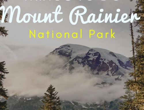 11 Can't Miss Things to Do in Mount Rainier National Park + 11 Tips For Visiting