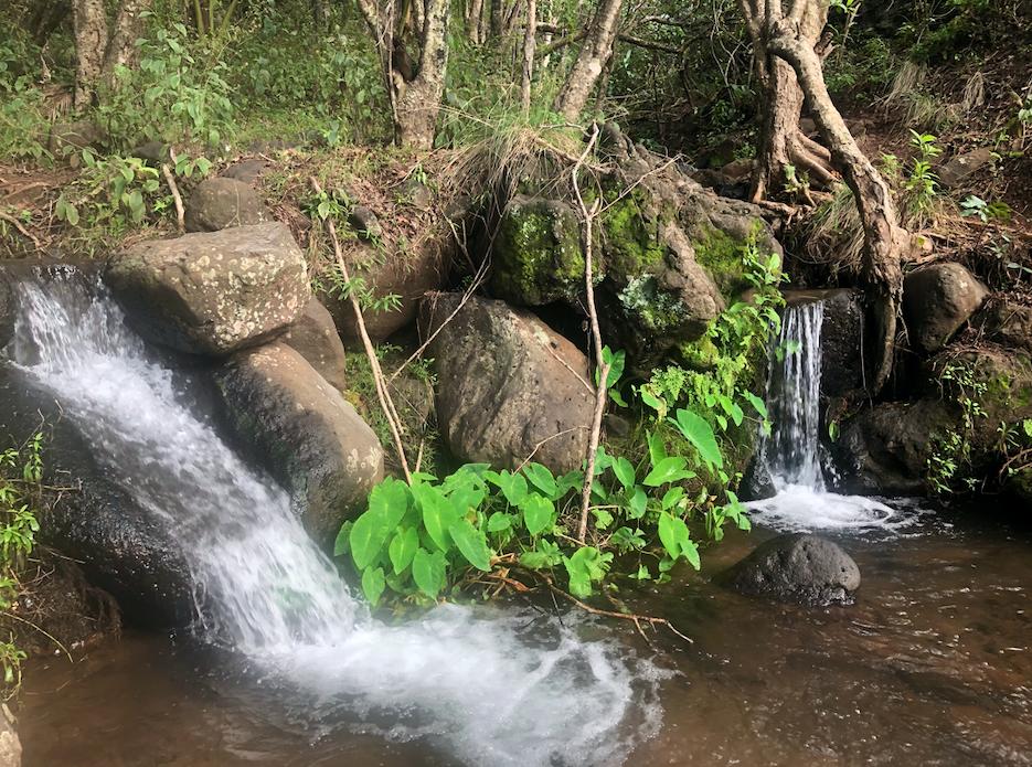 Water on the Kalalau Trail