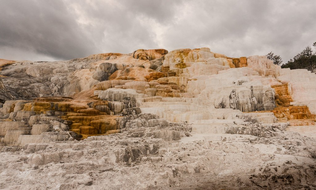 Grand Teton to Yellowstone to Glacier National Parks Road Trip Mammoth Hot Springs